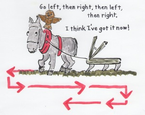 Plow horse crisscrossing a field, left and then right and then left again.